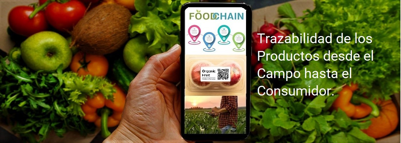 Female hand with smartphone and full boxes of different fresh organic vegetables. Delivery or Order food online concept